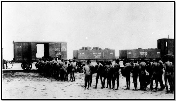 الأنفار يقفون عراة أمام القطار في انتظار تطهير ملابسهم بالبخار من يرقات الملاريا بعد عمليات التنظيف (1917)