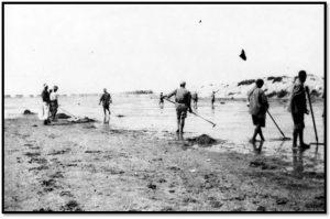 الأنفار أثناء عمليات مكافحة الملاريا في المستنقعات والبرك (1917)
