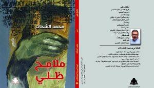 محمد الشحات، ملامح ظلي